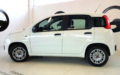 Fiat Panda 1.3 MTJ Easy
